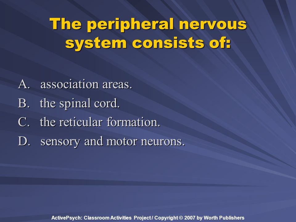 ActivePsych: Classroom Activities Project / Copyright © 2007 by Worth Publishers The peripheral nervous system consists of: A. association areas. B. t