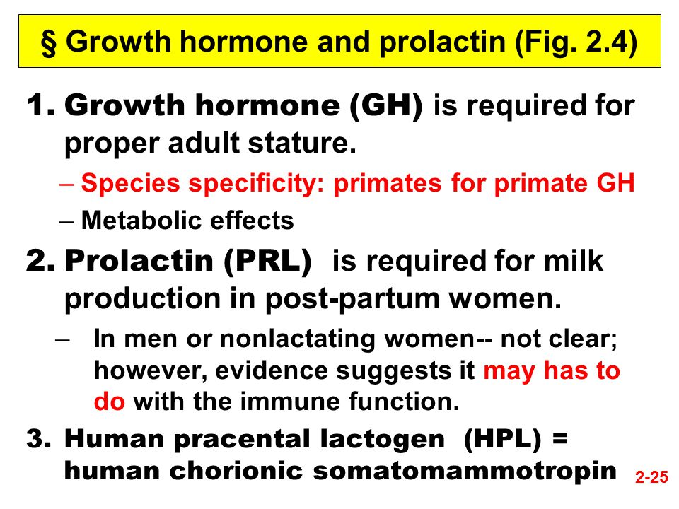 § Growth hormone and prolactin (Fig. 2.4) 1.Growth hormone (GH) is required for proper adult stature. –Species specificity: primates for primate GH –M