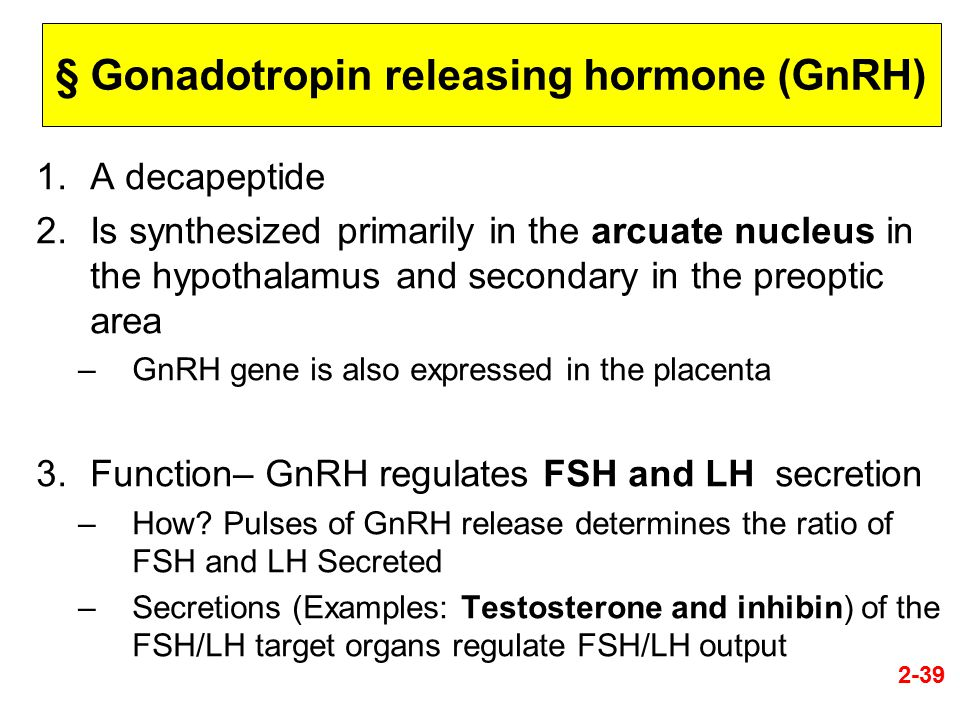 § Gonadotropin releasing hormone (GnRH) 1.A decapeptide 2.Is synthesized primarily in the arcuate nucleus in the hypothalamus and secondary in the pre