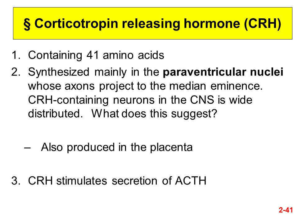 § Corticotropin releasing hormone (CRH) 1.Containing 41 amino acids 2.Synthesized mainly in the paraventricular nuclei whose axons project to the medi