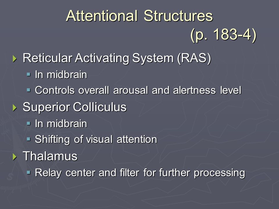 Attentional Structures (p.