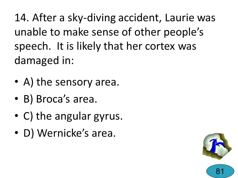 13. After Sam's stroke, he had difficulty speaking, but could understand what others were saying to him. He likely had damage to: A) Wernicke's Area.