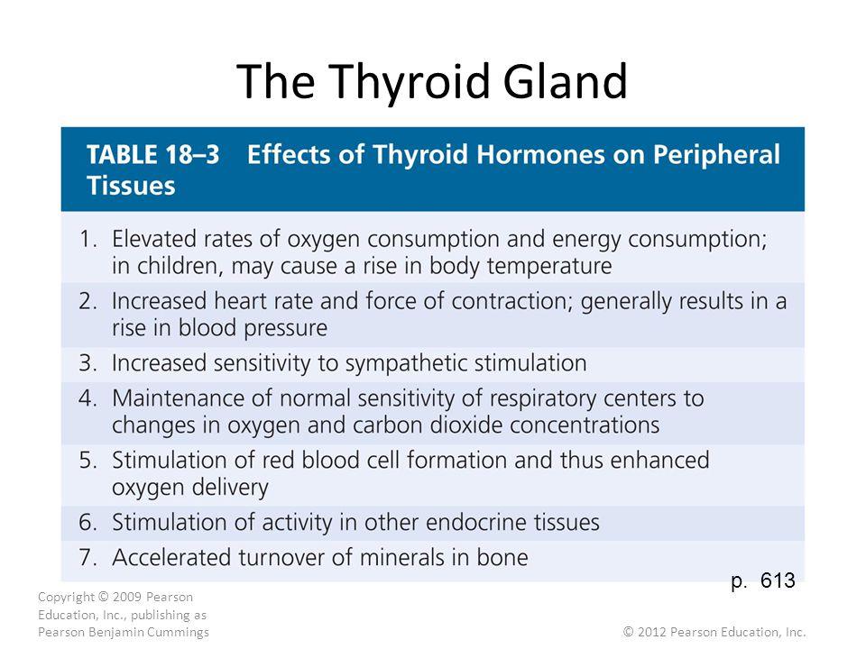 The Thyroid Gland Copyright © 2009 Pearson Education, Inc., publishing as Pearson Benjamin Cummings © 2012 Pearson Education, Inc.