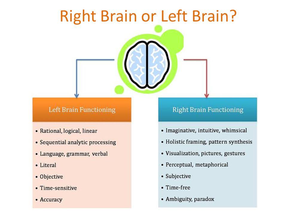 Right Brain or Left Brain