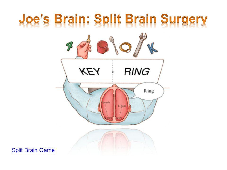 Split Brain Game