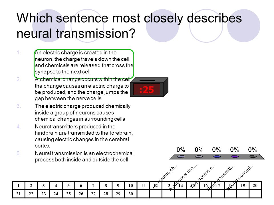 Which sentence most closely describes neural transmission.