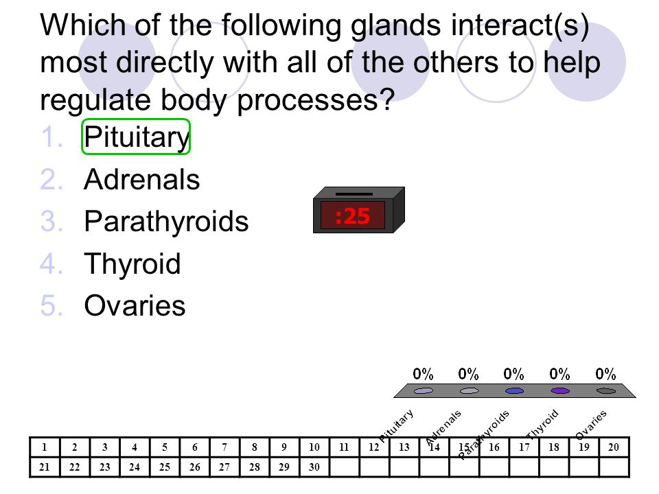 Which of the following glands interact(s) most directly with all of the others to help regulate body processes.