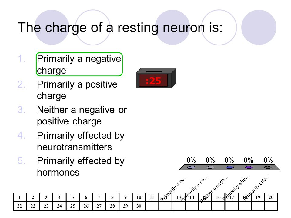 The charge of a resting neuron is: :25 1.Primarily a negative charge 2.Primarily a positive charge 3.Neither a negative or positive charge 4.Primarily effected by neurotransmitters 5.Primarily effected by hormones 1234567891011121314151617181920 21222324252627282930