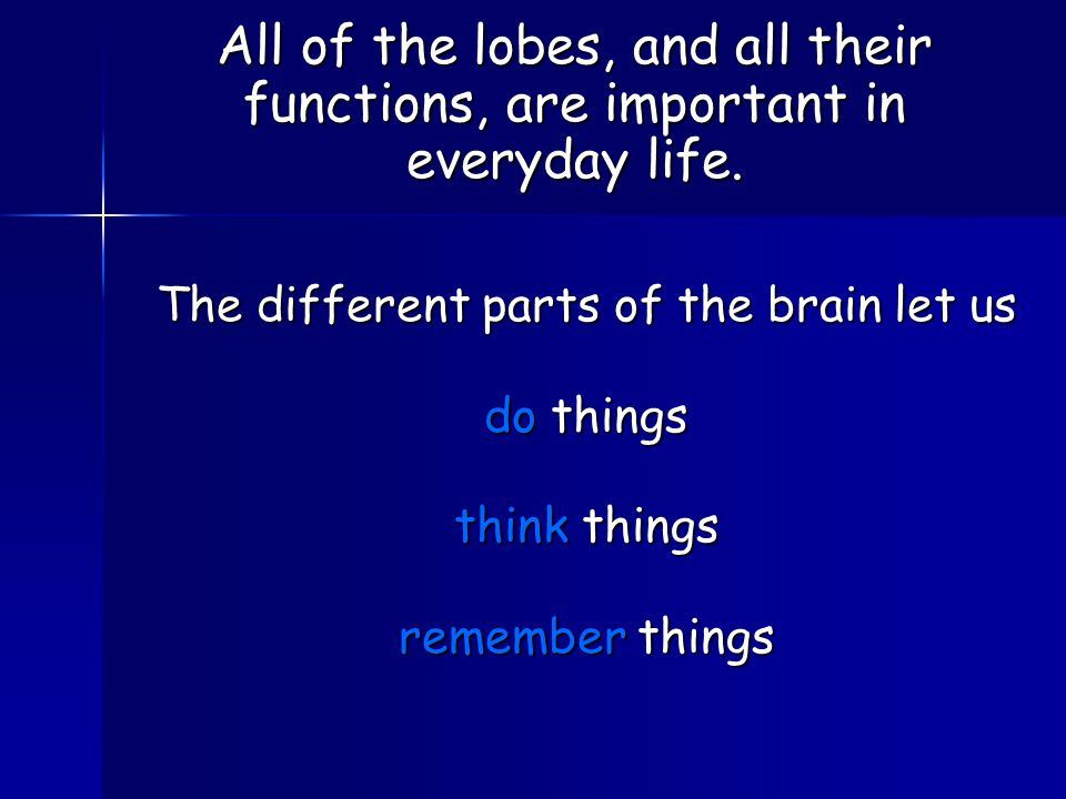 The different parts of the brain let us do things think things remember things All of the lobes, and all their functions, are important in everyday life.