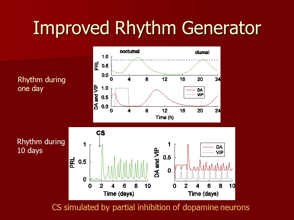 Improved Rhythm Generator Rhythm during one day Rhythm during 10 days CS simulated by partial inhibition of dopamine neurons
