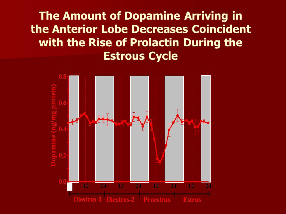 The Amount of Dopamine Arriving in the Anterior Lobe Decreases Coincident with the Rise of Prolactin During the Estrous Cycle