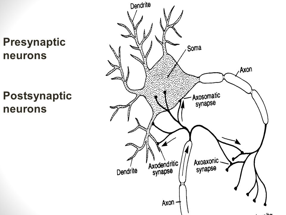 Cerebralvascular Obstruction Thrombosis is a stationary obstruction Embolus is a traveling clot that obstructs Aneurysm is a dilation or ballooning of a vessel wall which can cause a rupture into surrounding space Congenital, AVM Trauma CVA, TIA