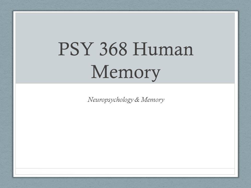 Neuropsychology of Memory AutonoeticEpisodic Semantic Procedural Noetic Anoetic