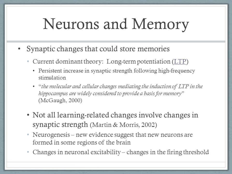 Neurons and Memory Current dominant theory: Long-term potentiation (LTP)LTP Persistent increase in synaptic strength following high-frequency stimulation the molecular and cellular changes mediating the induction of LTP in the hippocampus are widely considered to provide a basis for memory (McGaugh, 2000) Not all learning-related changes involve changes in synaptic strength (Martin & Morris, 2002) Neurogenesis – new evidence suggest that new neurons are formed in some regions of the brain Changes in neuronal excitability – changes in the firing threshold Synaptic changes that could store memories