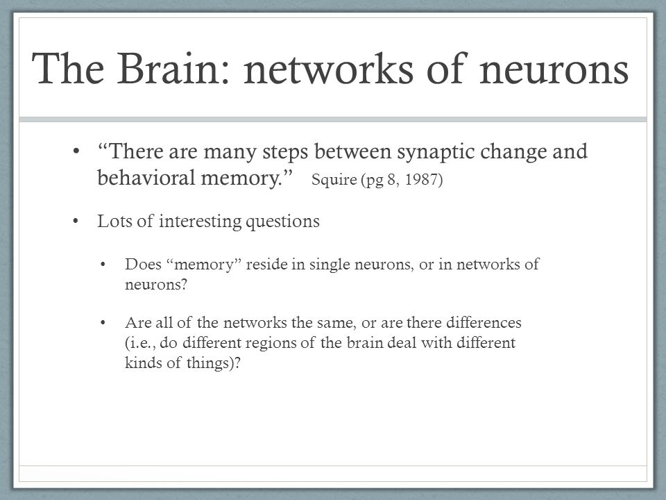 There are many steps between synaptic change and behavioral memory. Squire (pg 8, 1987) The Brain: networks of neurons Lots of interesting questions Does memory reside in single neurons, or in networks of neurons.
