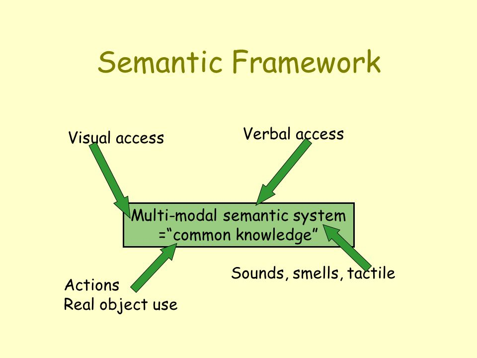 Semantic Framework Multi-modal semantic system = common knowledge Visual access Verbal access Actions Real object use Sounds, smells, tactile