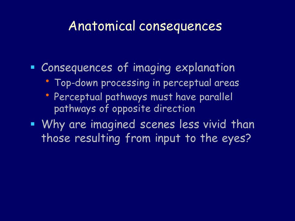 Anatomical consequences  Consequences of imaging explanation Top-down processing in perceptual areas Perceptual pathways must have parallel pathways