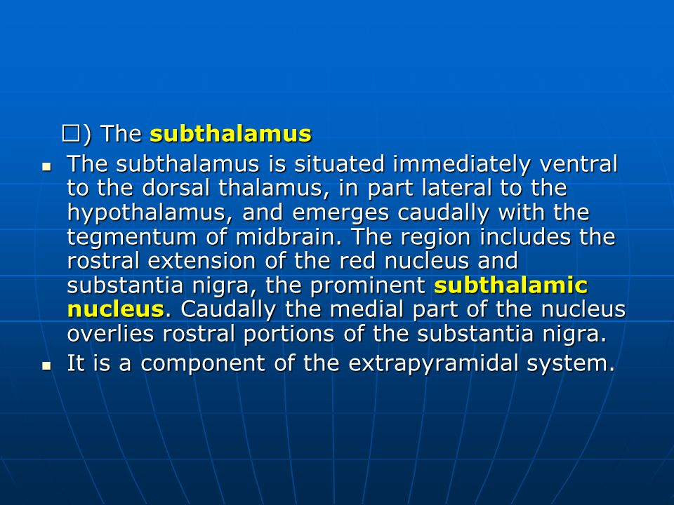 Ⅳ ) The subthalamus Ⅳ ) The subthalamus The subthalamus is situated immediately ventral to the dorsal thalamus, in part lateral to the hypothalamus, a