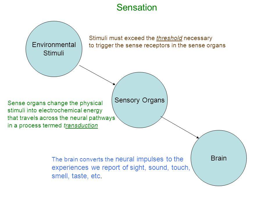 Figure Ground Perceptual Organization