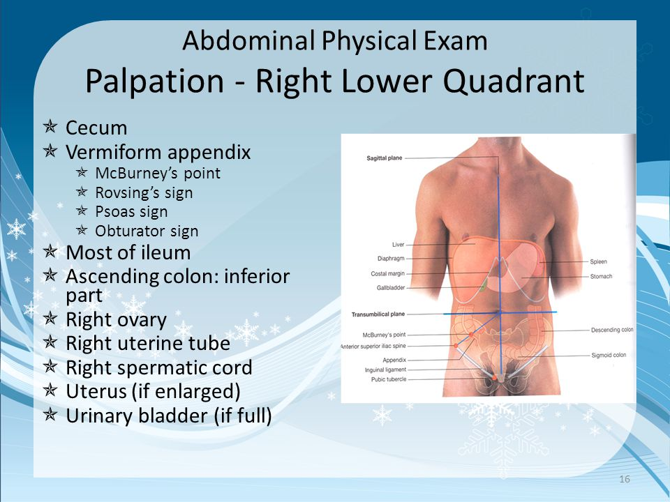 Abdominal Physical Exam Palpation - Right Lower Quadrant  Cecum  Vermiform appendix  McBurney's point  Rovsing's sign  Psoas sign  Obturator sign  Most of ileum  Ascending colon: inferior part  Right ovary  Right uterine tube  Right spermatic cord  Uterus (if enlarged)  Urinary bladder (if full) 16