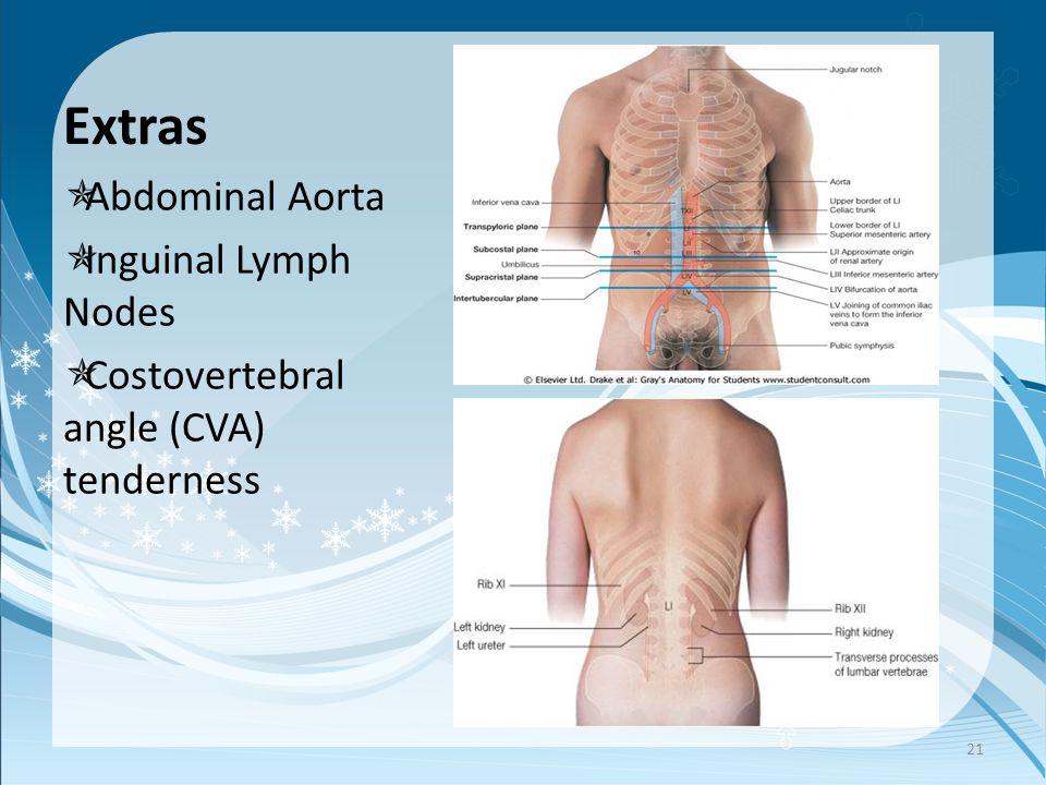 Extras  Abdominal Aorta  Inguinal Lymph Nodes  Costovertebral angle (CVA) tenderness 21