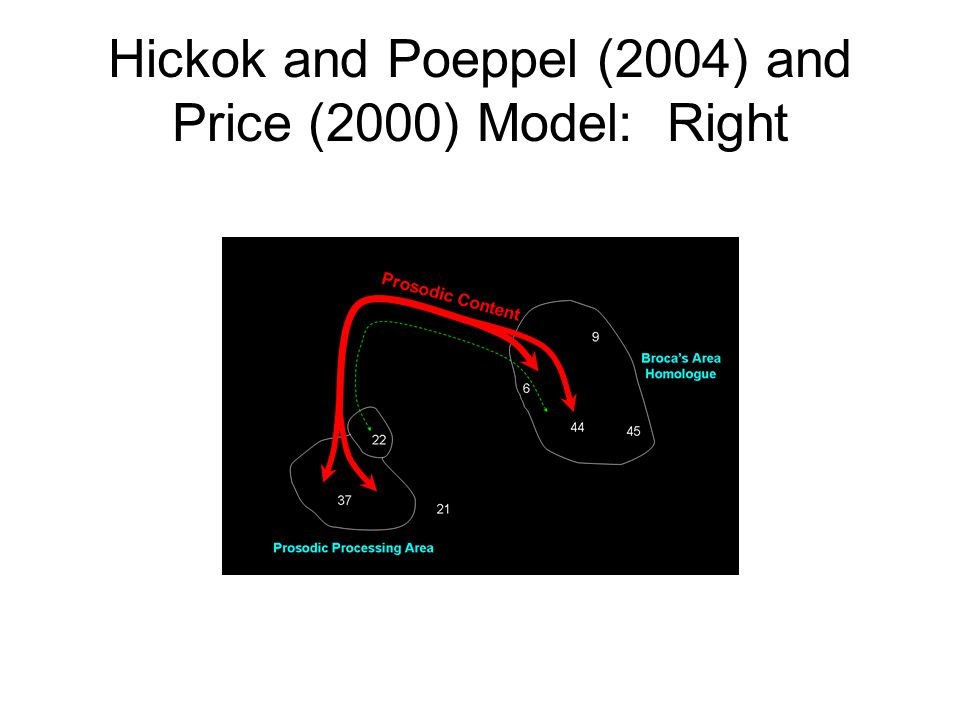Hickok and Poeppel (2004) and Price (2000) Model: Right