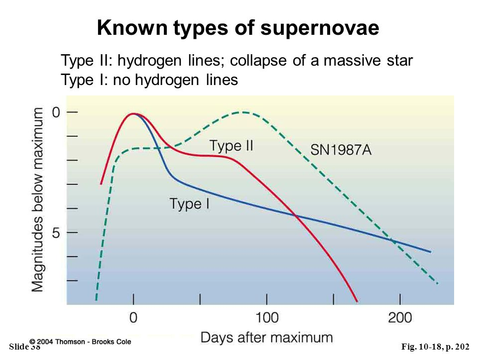 Slide 38Fig. 10-18, p. 202 Known types of supernovae Type II: hydrogen lines; collapse of a massive star Type I: no hydrogen lines