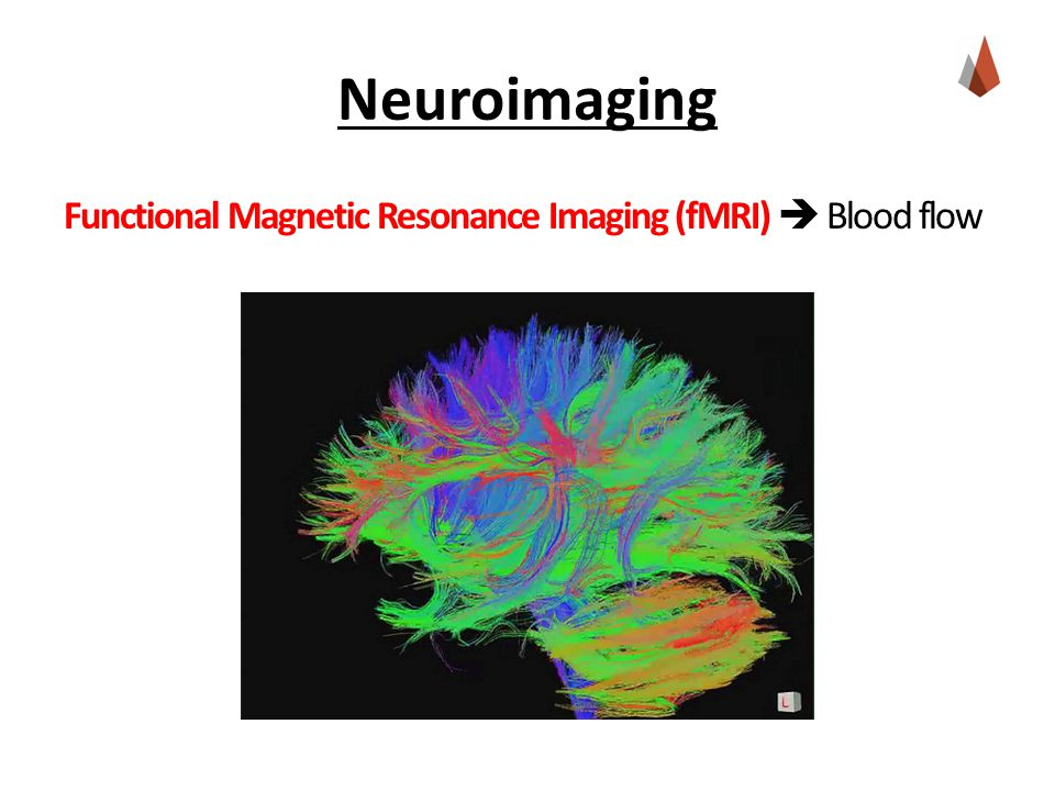 Neuroimaging Functional Magnetic Resonance Imaging (fMRI)  Blood flow