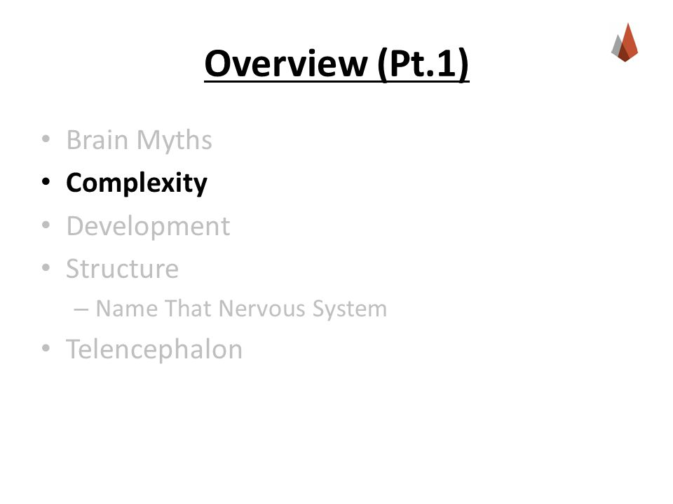Overview (Pt.1) Brain Myths Complexity Development Structure – Name That Nervous System Telencephalon