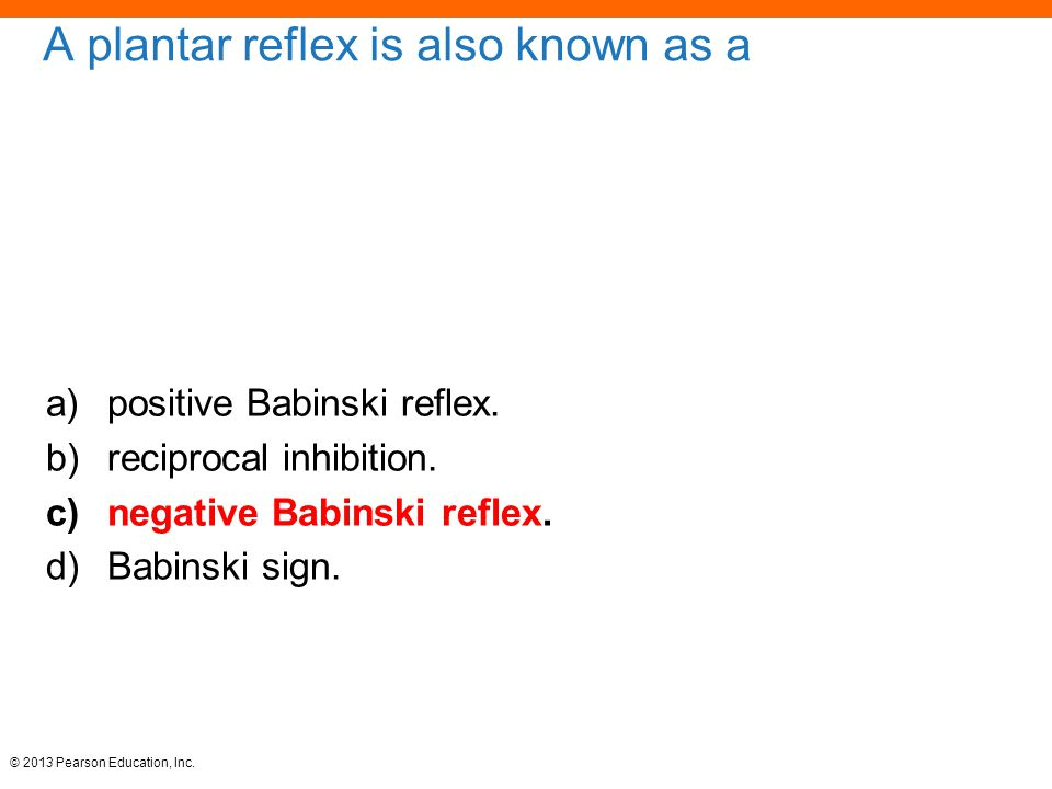 © 2013 Pearson Education, Inc. A plantar reflex is also known as a a)positive Babinski reflex. b)reciprocal inhibition. c)negative Babinski reflex. d)