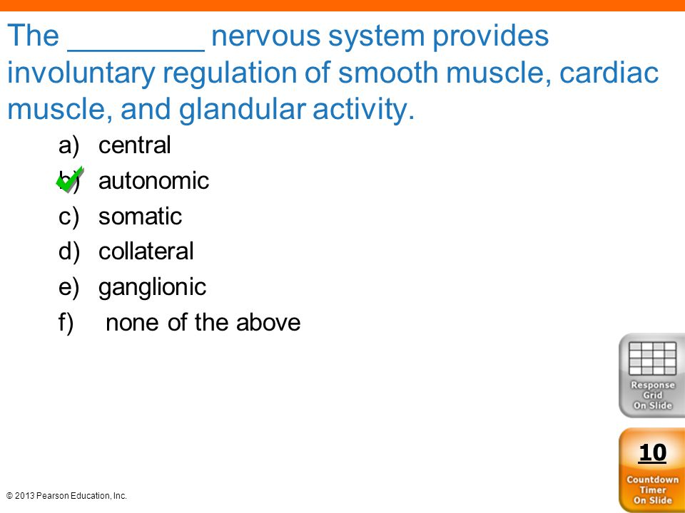 © 2013 Pearson Education, Inc. The ________ nervous system provides involuntary regulation of smooth muscle, cardiac muscle, and glandular activity. a
