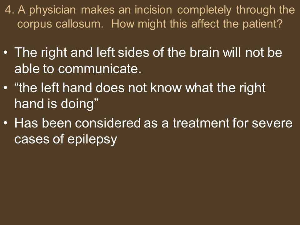 4. A physician makes an incision completely through the corpus callosum. How might this affect the patient? The right and left sides of the brain will