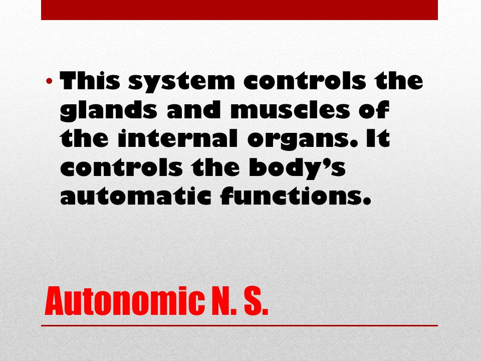 Autonomic N. S. This system controls the glands and muscles of the internal organs.