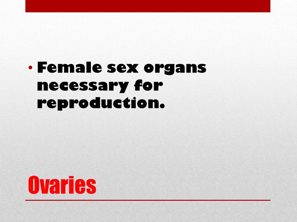 Ovaries Female sex organs necessary for reproduction.