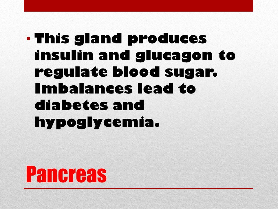 Pancreas This gland produces insulin and glucagon to regulate blood sugar. Imbalances lead to diabetes and hypoglycemia.