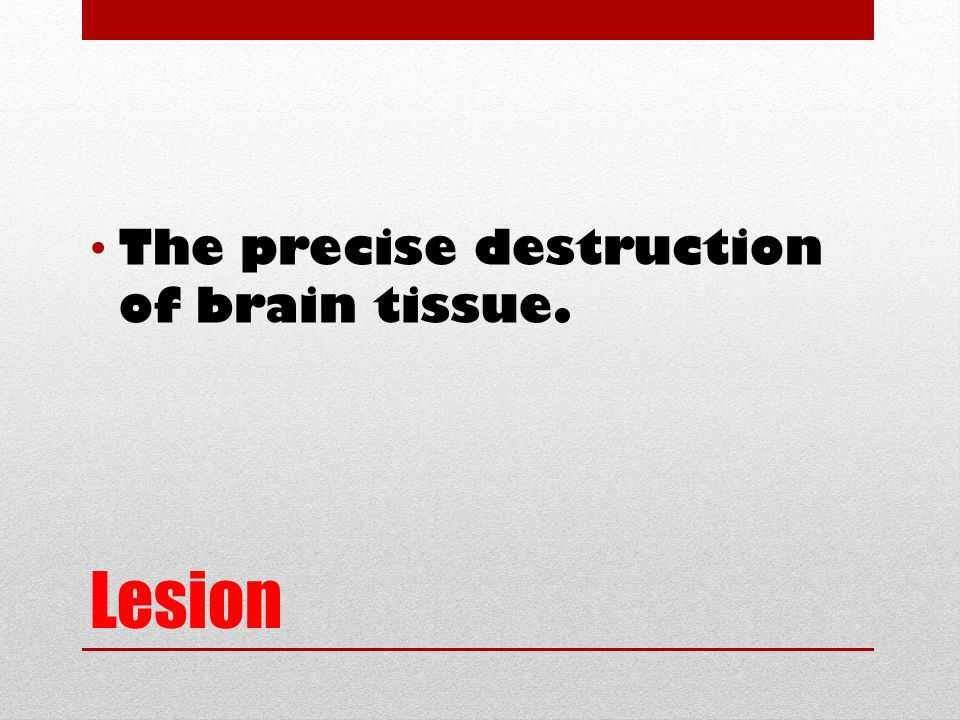 Lesion The precise destruction of brain tissue.