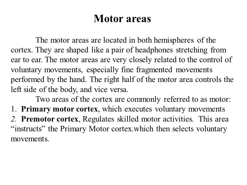 Motor areas The motor areas are located in both hemispheres of the cortex. They are shaped like a pair of headphones stretching from ear to ear. The m