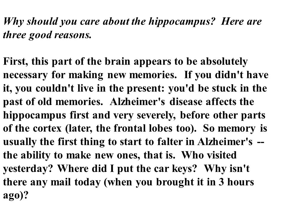 Why should you care about the hippocampus? Here are three good reasons. First, this part of the brain appears to be absolutely necessary for making ne