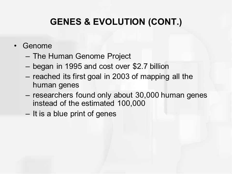 GENES & EVOLUTION (CONT.) Genome –The Human Genome Project –began in 1995 and cost over $2.7 billion –reached its first goal in 2003 of mapping all th
