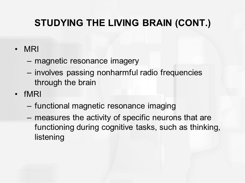 STUDYING THE LIVING BRAIN (CONT.) MRI –magnetic resonance imagery –involves passing nonharmful radio frequencies through the brain fMRI –functional ma