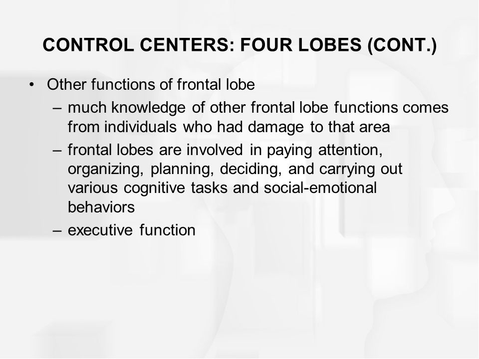 Other functions of frontal lobe –much knowledge of other frontal lobe functions comes from individuals who had damage to that area –frontal lobes are