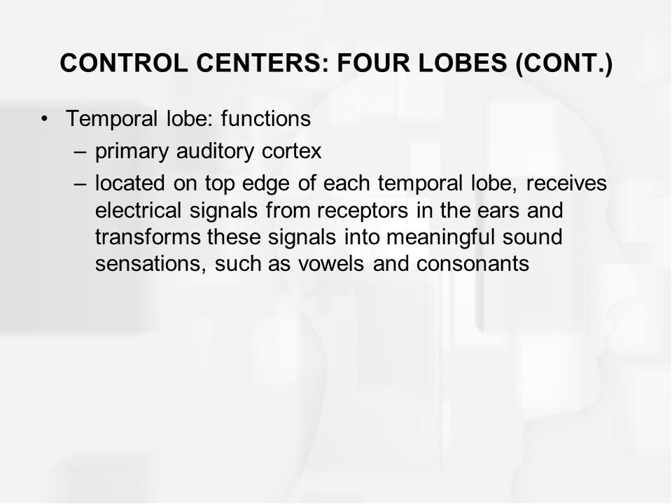 CONTROL CENTERS: FOUR LOBES (CONT.) Temporal lobe: functions –primary auditory cortex –located on top edge of each temporal lobe, receives electrical