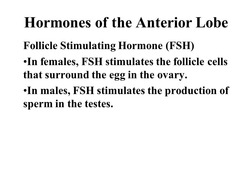 Hormones of the Anterior Lobe Follicle Stimulating Hormone (FSH) In females, FSH stimulates the follicle cells that surround the egg in the ovary.