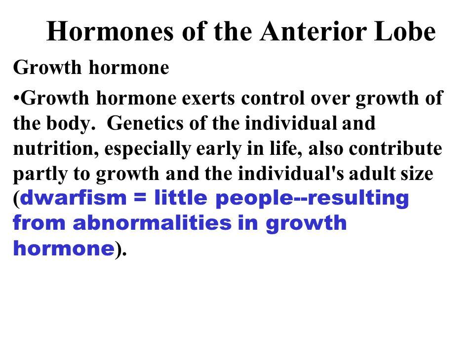 Hormones of the Anterior Lobe Growth hormone Growth hormone exerts control over growth of the body.
