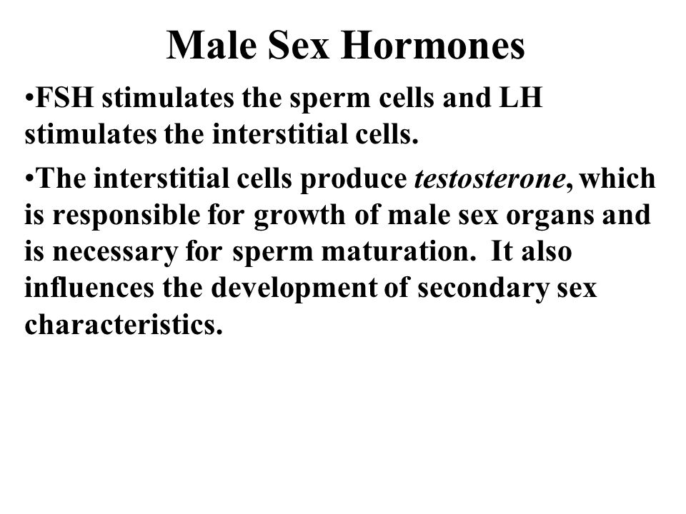 Male Sex Hormones FSH stimulates the sperm cells and LH stimulates the interstitial cells.