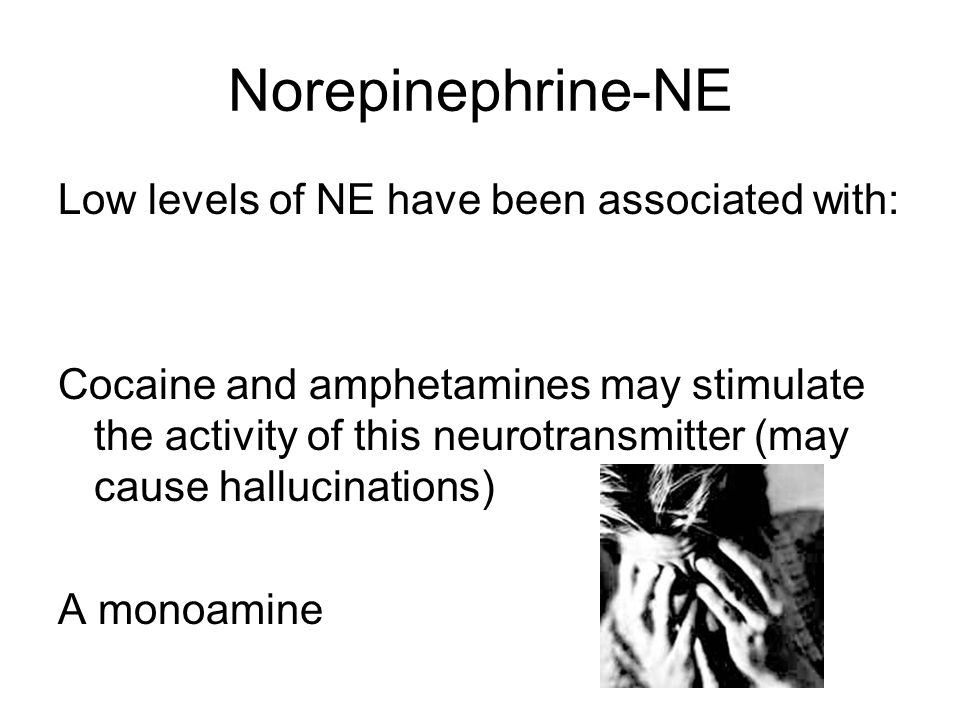 Norepinephrine-NE Low levels of NE have been associated with: Cocaine and amphetamines may stimulate the activity of this neurotransmitter (may cause hallucinations) A monoamine