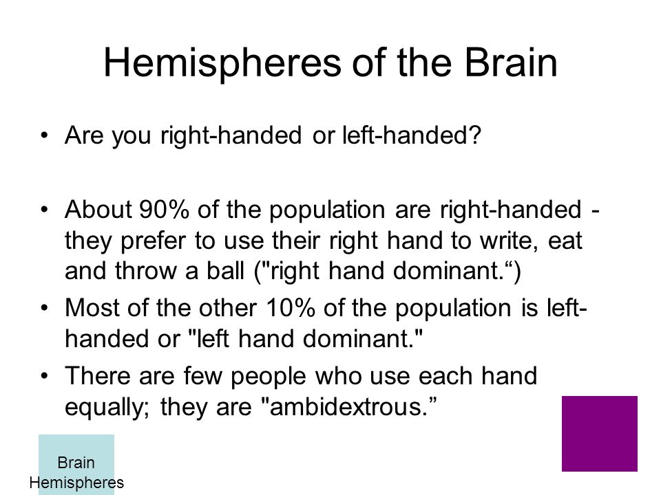 Hemispheres of the Brain Are you right-handed or left-handed.