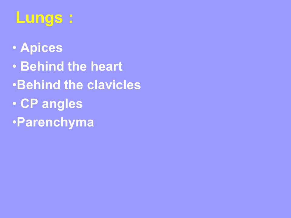 Lungs : Apices Behind the heart Behind the clavicles CP angles Parenchyma