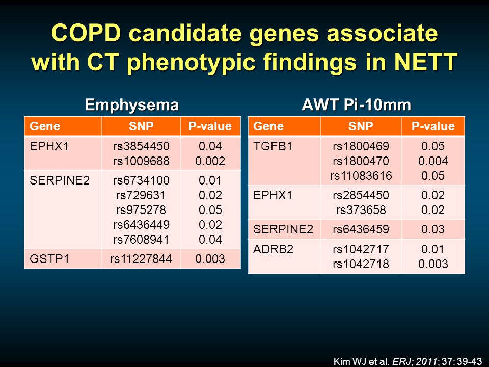 COPD candidate genes associate with CT phenotypic findings in NETT Emphysema GeneSNPP-value EPHX1rs3854450 rs1009688 0.04 0.002 SERPINE2rs6734100 rs729631 rs975278 rs6436449 rs7608941 0.01 0.02 0.05 0.02 0.04 GSTP1rs112278440.003 AWT Pi-10mm GeneSNPP-value TGFB1rs1800469 rs1800470 rs11083616 0.05 0.004 0.05 EPHX1rs2854450 rs373658 0.02 SERPINE2rs64364590.03 ADRB2rs1042717 rs1042718 0.01 0.003 Kim WJ et al.