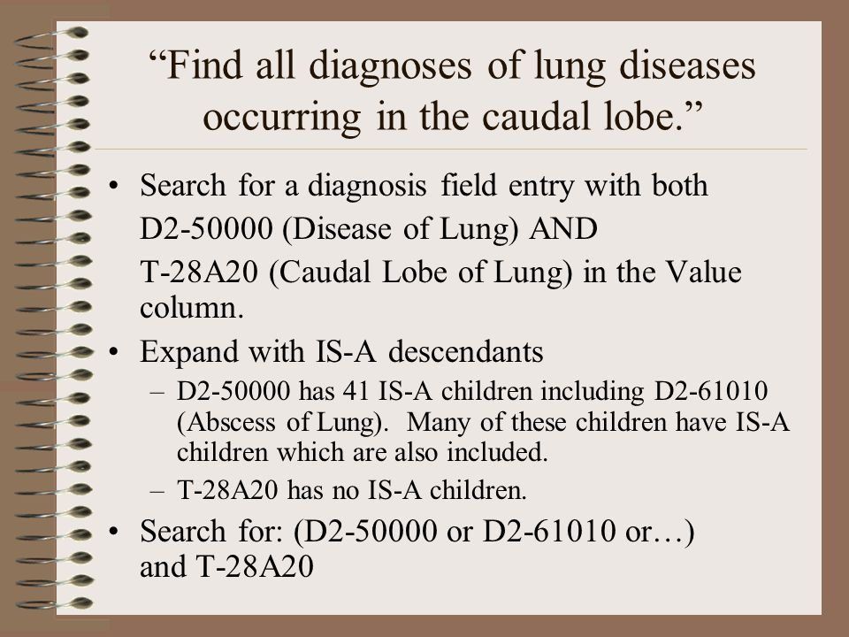 Find all diagnoses of lung diseases occurring in the caudal lobe. Search for a diagnosis field entry with both D2-50000 (Disease of Lung) AND T-28A20 (Caudal Lobe of Lung) in the Value column.